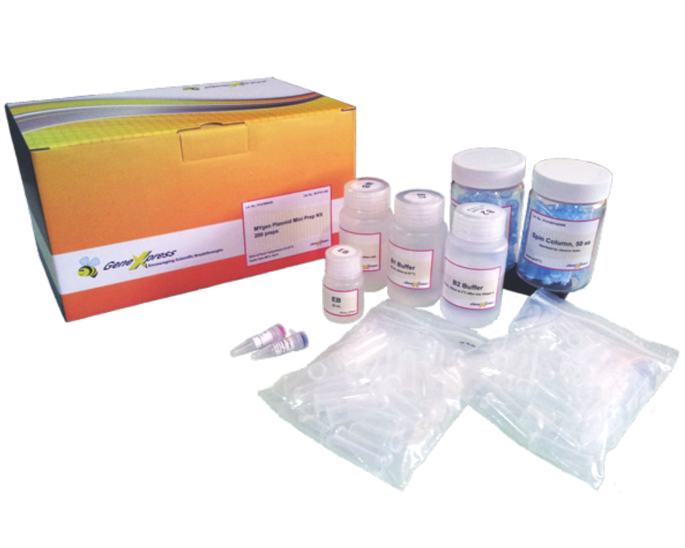 MYgen™ Plasmid Mini Prep Kit